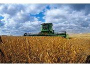 關注國產大豆振興 提單產 破重圍