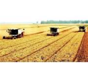 """""""三權分置"""" 是農村土地產權制度的重大創新"""