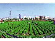 农村土地确权进展顺利成效初显