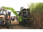 创新引领,中联重科甘蔗收获机在广西大量上市