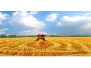 """为""""三农""""发展注入动力 农业供给侧拓宽新边界"""