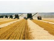 """构建""""金字塔""""型体系 提升农业科研基础设施水平"""