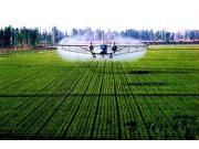 全球视野下的农业现代化改革