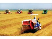 如何加快推进农机化供给侧改革?