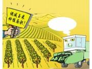 玉米种植面积减了玉米机怎么办?
