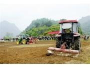 農業全程機械化:作業更精準 種田效益高