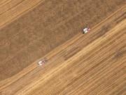 安徽:天气晴好抢收小麦