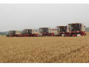 三夏大面积开机 雷沃重工扮靓农业供给侧改革