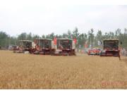 河北小麥已收獲過半 3449萬畝小麥已機收1972.91萬畝