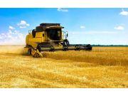 """从""""三夏""""看农业结构调整积极信号"""