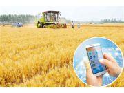 """农业直通车信息平台显身手—— 农业""""滴滴"""",等你来约"""