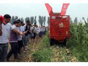 河北省農機演示會:時風玉米收割機係列產品性能俱佳