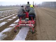 马铃薯主粮化大商机下 马铃薯种植机械将迎来黄金发展期