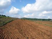 论休耕对土地有哪些好处?