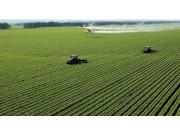 全国家庭承包耕地流转4.47亿亩 多地开收风险保障金