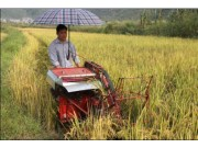 """小型农机挥别""""价格战"""" 技术创新是突破口"""