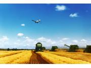 辽宁农业供给侧结构性改革:既调增又调减