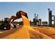 韩长赋:黑龙江调研 坚持不懈推进农业结构调整千方百计搞好今年粮食收储