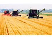我國小麥收獲機產業未來前景繼續向好