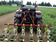 小芝麻也有春天:青岛农大五种芝麻机械填国内空白