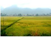 陕西省5亿元助推大型灌区更新改造
