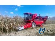 玉米联合收割机能手:牧神4YZB-5型自走式玉米联合收获机邀您体验