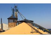 高度重視糧食干燥與儲存問題