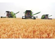 农机通2016上半年小麦收割机市场研报
