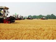 全国农机化工作会议:创新驱动 加快农机化发展