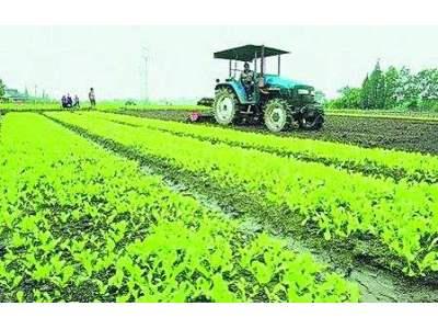 新型职业农民成现代农业主导力量