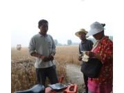 农机人苦,可农业服务的未来在哪里?