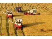 农机保险叫好不叫座 农机手为何被拒之门外?