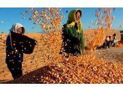 """农业部部长韩长赋:十八大以来农业农村经济呈现""""六个新"""""""