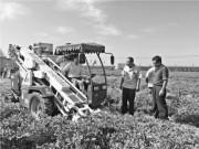 农业装备这五年,数说亮点
