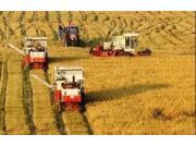 部分省市积极开展农机保险保费补贴