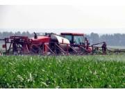 2017年全国调减2000万亩玉米种植面积