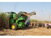 劉憲:我們這樣看待推進甘蔗生產機械化問題