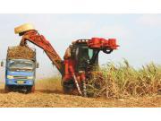 实现甘蔗生产机械化是推进农业全面机械化的重要组成部分