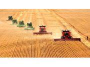 陕西今年将大力推进农业供给侧结构性改革