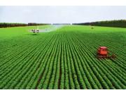 李克强:确定加强高标准农田建设政策措施