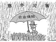 这项农村补贴,补贴力度高达75%,但很多农民都不愿意拿!