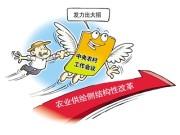 """农业供给侧改革凸显中国重视""""三农"""""""