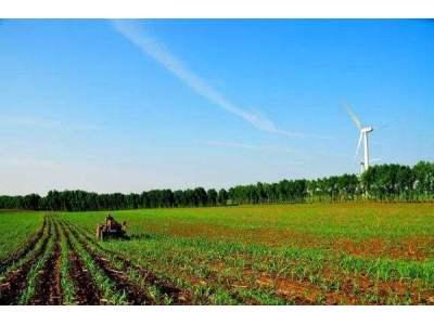 """""""十三五""""时期我国力争建成6亿亩高标准农田"""