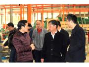 安徽省农机推广系统领导莅临希森天成进行调研