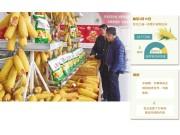 玉米收购:从一家独唱到多元主体大合唱