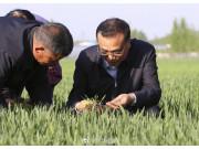 李克强总理为农机合作社理事长支三招