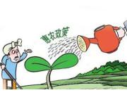 种粮大户期盼惠农政策落实到位