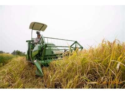 告诉乡亲们,全喂入水稻机可以放心经营!