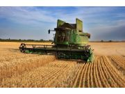 今年小麥收購價格確定