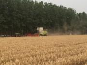 科乐收与河南天和携手助力许昌农业现代化发展